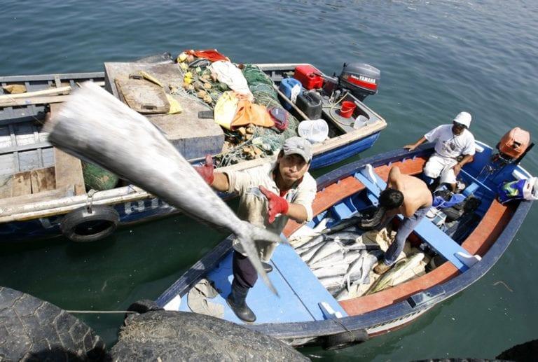 Promueven capacitación para pescadores artesanales
