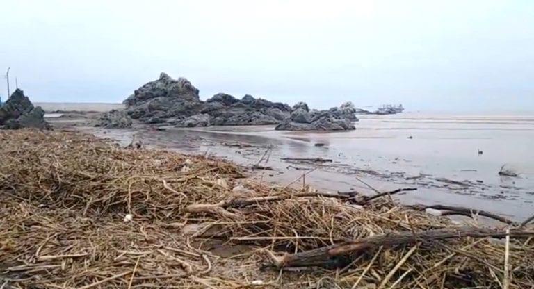 Mar se retira unos 60 metros en la playa Boca del Río