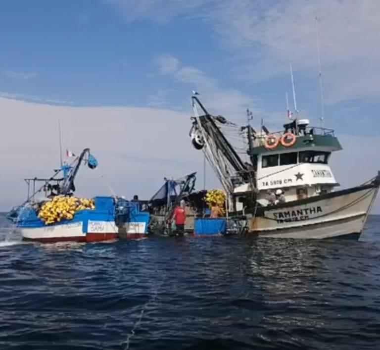 Embarcación pesquera se hunde frente a Morro Sama