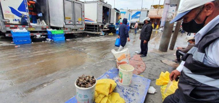 Extractores de mariscos denuncian abusos por parte de Produce