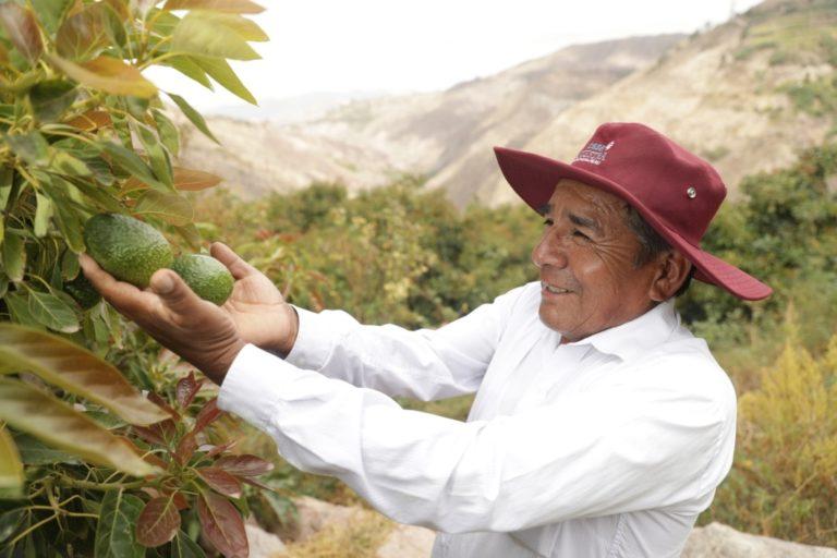 Veintitrés iniciativas fueron pre seleccionadas para concursar por capital semilla en Torata