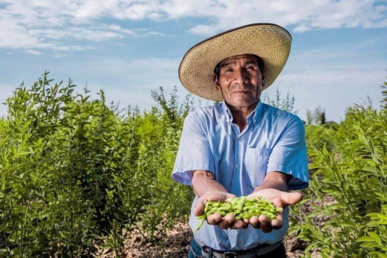 Regiones y municipios tienen S/ 2,000 millones para impulso agropecuario