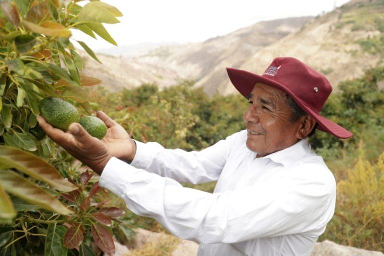 13 organizaciones accederán a capital semilla para ejecutar proyectos en Torata