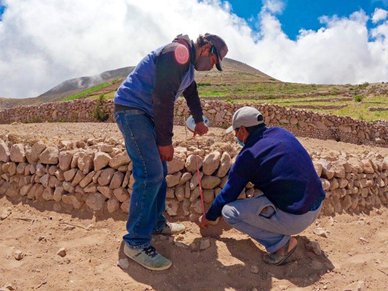 Southern Perú rehabilita 810 hectáreas de andenes para producción agraria en Candarave
