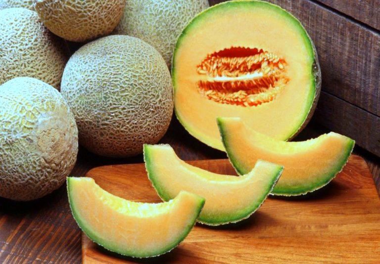 Producción de melón se posiciona en mercados internacionales
