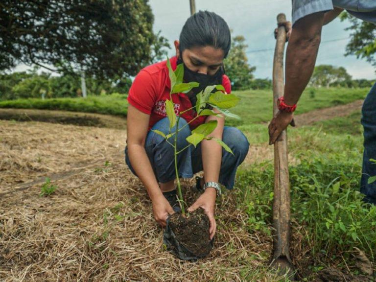 Realizarán campaña ecológica en Matarani