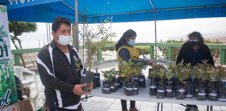 Matarani: municipio entregó plantones frutales, gratuitos