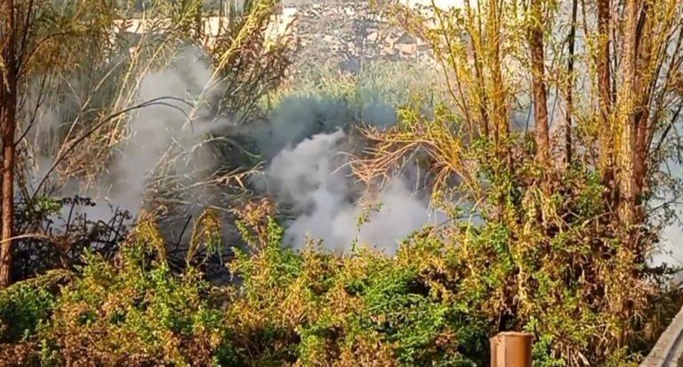 Gran Incendio forestal se registró por el sector El Gramadal en Moquegua