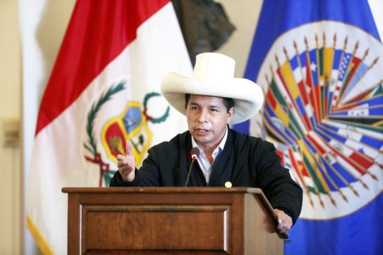 """Pedro Castillo en la OEA: """"Tenemos corruptos hasta para exportar"""""""
