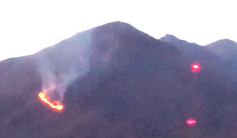 Dos nuevos incendios se registraron en el distrito de Coalaque