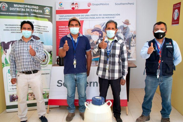 Southern Perú entrega capital semilla a emprendedores de Ilabaya que instalarán posta de inseminación artificial pecuaria